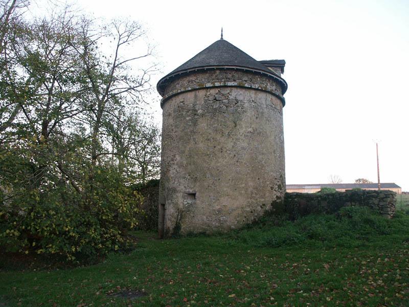 Charpente de pigeonnier à St Aubin de Baubigné (79)
